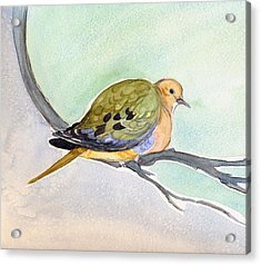 Acrylic Print featuring the painting Mourning Dove by Katherine Miller