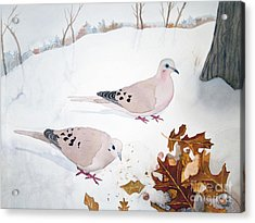 Acrylic Print featuring the painting Mourning Doves by Laurel Best