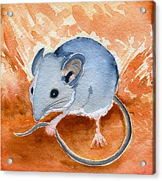 Acrylic Print featuring the painting Mouse by Katherine Miller