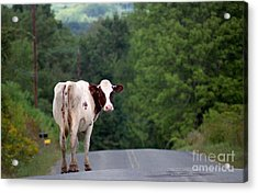 Movin On Down The Road Acrylic Print