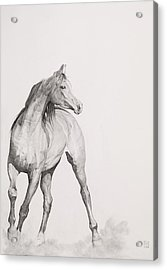 Moving Image Acrylic Print by Emma Kennaway