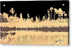 Mprints - Bare Bones Acrylic Print by M  Stuart