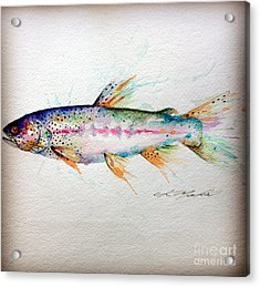 Mr Trout Acrylic Print