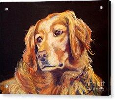 Mr.wilson Werth-johnson Acrylic Print by Mindy Sue Werth