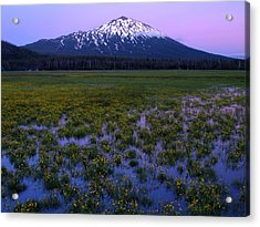 Acrylic Print featuring the photograph Mt. Bachelor Twilight by Kevin Desrosiers