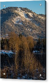 Mt Baldy Near Grants Pass Acrylic Print