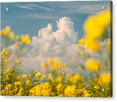 Mt Cloud Acrylic Print