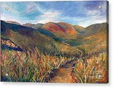 Mt. Diablo Hills Acrylic Print