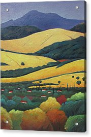 Mt. Diablo In Distance Acrylic Print by Gary Coleman