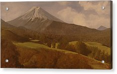 Acrylic Print featuring the painting Mt. Fuji by Rick Fitzsimons