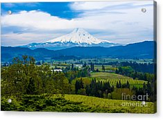 Mt Hood Rises Over Hood River Valley Pear Orchards In Spring Acrylic Print