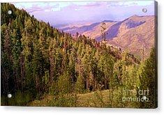 Mt. Lemmon Vista Acrylic Print