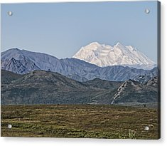 Mt. Mckinley Aka Denali Acrylic Print