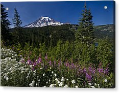 Mt. Rainier Acrylic Print by Adam Romanowicz