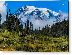 Mt. Rainier Acrylic Print by Chris McKenna