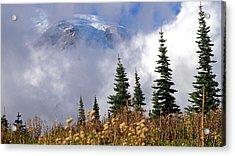 Mt Rainier Cloud Meadow Acrylic Print