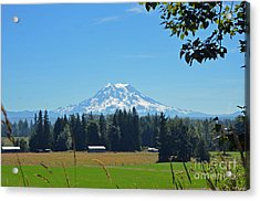 Mt. Rainier From The Western Side Acrylic Print