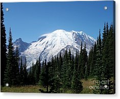 Mt. Rainier In August Acrylic Print by Chalet Roome-Rigdon