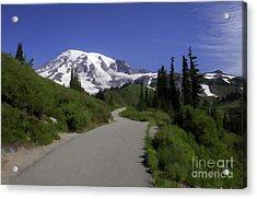 Mt Rainier Painted Acrylic Print