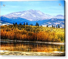 Mt. Silverheels With Aspens Acrylic Print