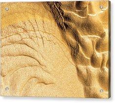 Mud Flare Acrylic Print