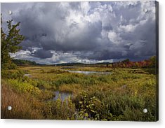 Mud Pond Clouds Acrylic Print