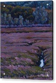 Mudflats - Cleavage Acrylic Print by Betsee  Talavera