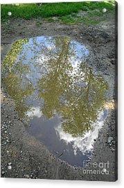 Mudpuddle Reflection Acrylic Print