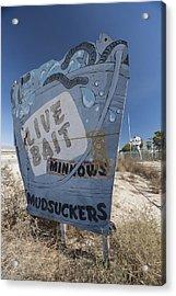 Mudsuckers Acrylic Print by Scott Campbell
