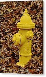 Mueller Fire Hydrant Acrylic Print