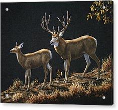 Mule Deer Ridge Acrylic Print