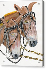 Acrylic Print featuring the painting Mules - Two - Beast Of Burden by Jan Dappen