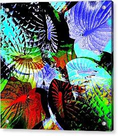 Multi Hosta Acrylic Print by Stephanie Aarons