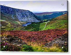 Multicolored Carpet Of Wicklow Hills. Ireland Acrylic Print