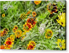 Acrylic Print featuring the photograph Multiplicity by Maria Janicki