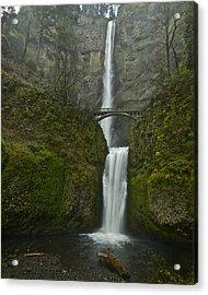 Multnomah Falls 0403131 Acrylic Print