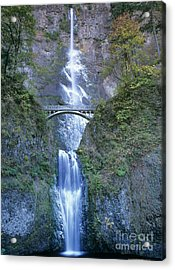 Multnomah Falls Columbia River Gorge Acrylic Print by Dave Welling