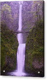 Multnomah In The Drizzling Rain Acrylic Print