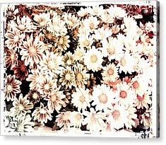 Mum Acrylic Print by Chasity Johnson