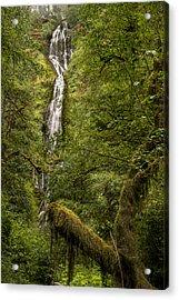 Munson Creek Falls Acrylic Print