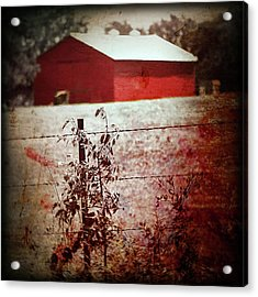 Murder In The Red Barn Acrylic Print by Trish Mistric