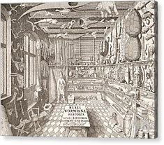 Museum Of Ole Worm, Leiden, 1655 Engraving Acrylic Print