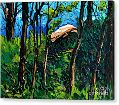 Mushrooming At Treaty Rock Acrylic Print by Charlie Spear