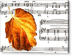 Music In Autumn Acrylic Print