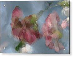 Music Acrylic Print by Viggo Mortensen