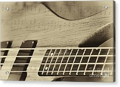 Musical Majesty Acrylic Print by Erika Weber