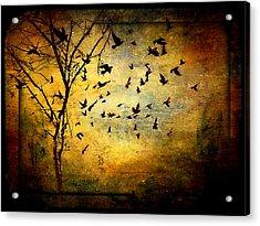 Musicisti Dell'aria Acrylic Print