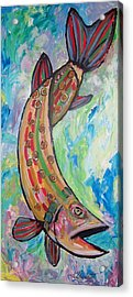Muskie Acrylic Print by Krista Ouellette