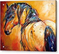 Mustang Appaloosa Acrylic Print