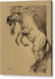 Mustang Rearing Acrylic Print by Derrick Higgins